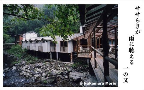 morionphoto060413_f01.jpg