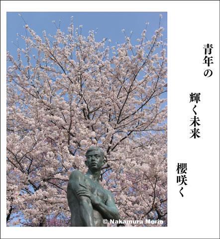 morionphoto060507_f02.jpg